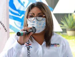 Urgente reinvención del IEE: Genoveva Huerta