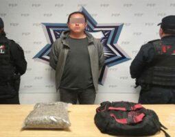 Detiene Policía Estatal a hombre con aparente marihuana